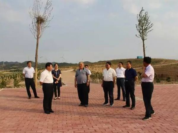 Chen Yanming to Shandong Huashan agriculture and forestry science and Technology Co., Ltd. inspection guidance work